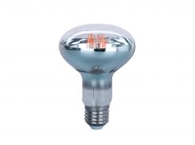 LED Pflanzenlampe R80 7W